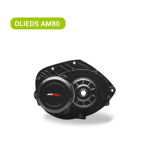 Olieds AM80